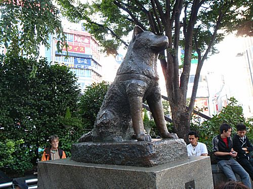 EIKA_JOURNAL_POST_140530_hachiko2