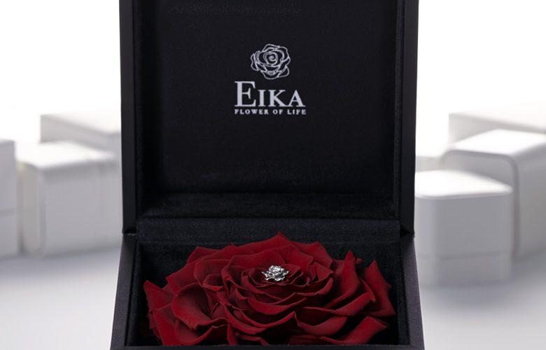 EIKA_FJEC_最高のプロポーズを