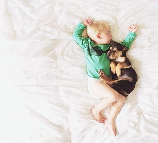 動物_赤ちゃん_癒し_写真_寝姿