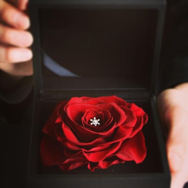 プロポーズ_プレゼント_婚約指輪_エンゲージリング_ローズ_バラ_花