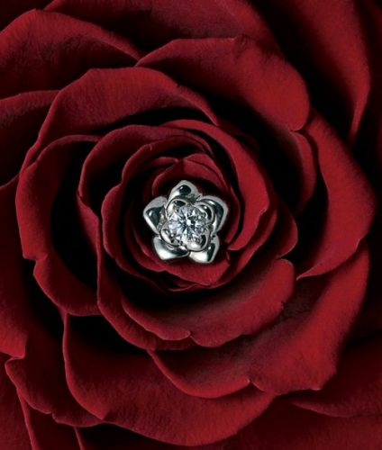 EIKA-フラワージュエリー-エンゲージメント-プロポーズ-婚約指輪-ダイヤモンド-バラ-花